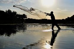 ۳ هزار هکتار از بستر رودخانههای کشور آزاد شد