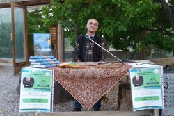 فروش خاک جنگل کیلویی ۵۰۰۰ تومان/ سرنوشت هامون در انتظار شاهوار