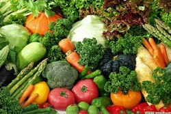 Food, agri. productions' export vol. up by 9% in 5 months