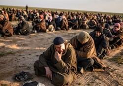 446 زیندانیی داعشی له زیندانەکانی هەرێمی کوردستاندان