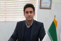دامپزشکان در معرض ۸۰۰ بیماری/ سامانه نظارتی دامپزشکی یزد رونمایی میشود