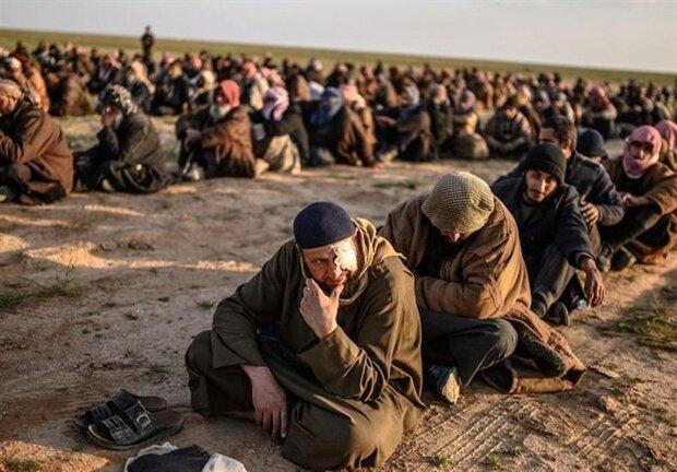 ٩٠٠ داعشی لە کوردستانی سووریا دادگایی دەکرێن