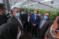 Agriculture minister's trip to S. Khorasan