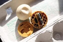 شناسایی قاچاقچیان حیات وحش با تخم مرغهای جی پی اس