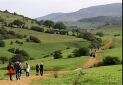 برخورد با دفاتر مسافرتی مشارکت کننده با گروههای طبیعت گردی غیرمجاز