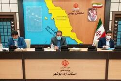 طرح برق امید با مشارکت سمنهای استان بوشهر اجرایی میشود