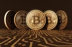 کوچ بخشی از سرمایهها از بورس به ارزهای دیجیتال/ فریب خریداران با «بیت کورن» به جای بیتکوین