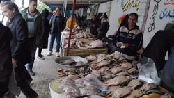 عرضه غذا از گوشت پرندگان مهاجر را به محیط زیست گزارش دهید/ شورای تامین مازندران همراه محیط زیست نیست
