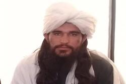 «اول خان» از فرماندهان ارشد طالبان کشته شد