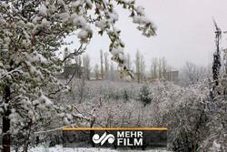 رئیس سازمان هواشناسی: زمستان سردی خواهیم داشت