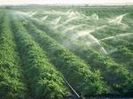 ۲۰۰ هزار از اراضی شهرستان کیار به تجهیزات آبیاری نوین مجهز شدند
