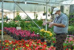 افتتاح هایپر کلینیک گل و گیاه در محله تهرانپارس