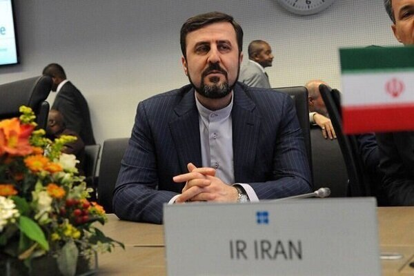 Iran's envoy reacts to IAEA chief's comments