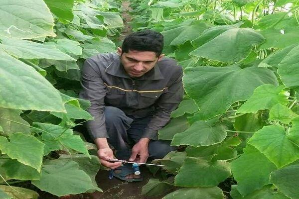 بهرهبرداری از اولین گلخانه گرمایش از کف در جوین
