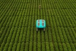ربات هوشمند کشاورزی را متحول میکند