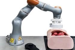 بازوی رباتیک کولونوسکوپی انجام می دهد