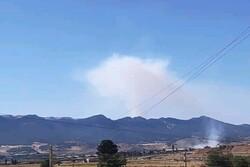 جنگلهای منطقه پیر وزگ شهرستان بویراحمد در آتش می سوزد