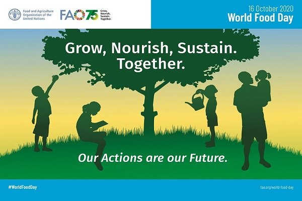 FAO warns over effects of COVID-19 on vulnerable populations