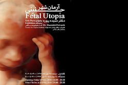 برپایی نمایشگاه «آرمانشهر جنینی» در گالری شلمان
