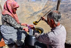 تهیه شیره انگور در خراسان شمالی/ شهدی شیرین اما با زحمت فراوان