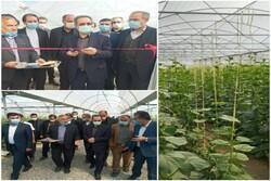 ۱۱ واحد تولیدی شهرک صنعتی قرچک توسط استاندار تهران افتتاح شد
