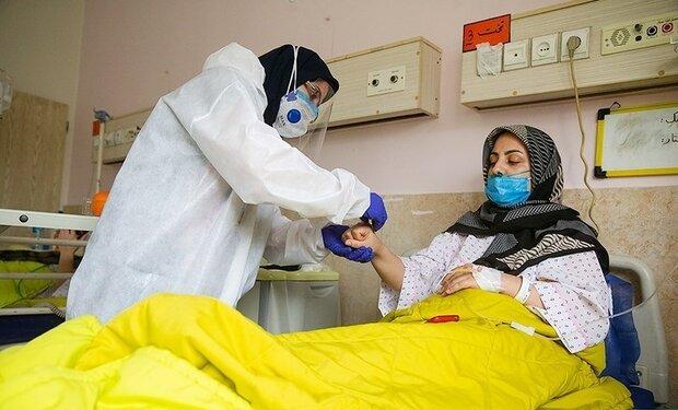 بستری بودن ۳۰۳ بیمار مبتلا به کرونا در مراکز درمانی استان ایلام