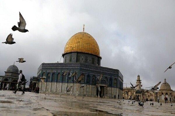 قطيع من المطبعين يزور المسجد الأقصى المبارك خلسة بحماية قطيع من المستوطنين