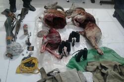 ۴شکارچی متخلف در شاهرود دستگیر شدند/ کشف ۲ لاشه قوچ