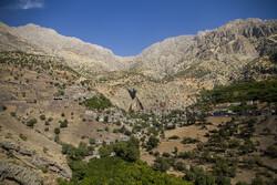 کشت باغات در ۷۵۰ هکتار از اراضی شیبدار شهرستان دره شهر