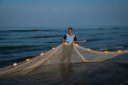 Cast-net fishing in Bandar Anzali