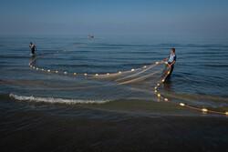 """Hazar Denizi'nde balıkçıların """"ağ mesaisi"""" başladı"""