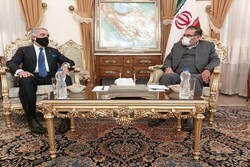 Iran plays key role in maintaining stability, peace in region