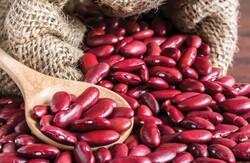 خرید بی واسطه حبوبات از کشاورز با اپلیکیشن ایرانی