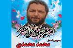تاکید رئیس قوه قضاییه بر برخوردقاطعانه با مسببین شهادت شهید محمدی
