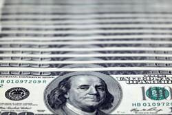 دلار به بالاترین سطح ۱ ساله رسید