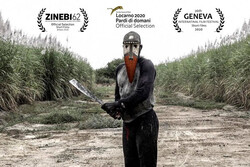 'Land Lot S7' goes to ZINEBI Film Festival in Spain