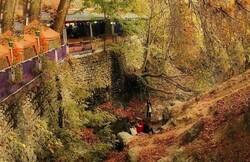 رود دره اوین درکه به قلمرو عمومی تبدیل می شود