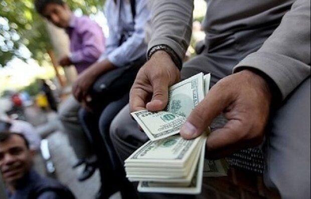 تعلیق سنگین در بازار ارز / دلالان نگران از آوار شکست نرخها