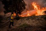 ۳۰۰ هکتار از مراتع خراسان شمالی طی ۶ ماه نخست امسال در آتش سوخت
