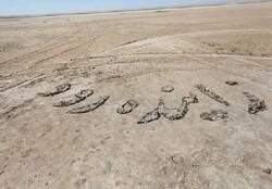 درخواست فعالان محیط زیست برای ایجاد ژئوپارک گاوخونی در اصفهان