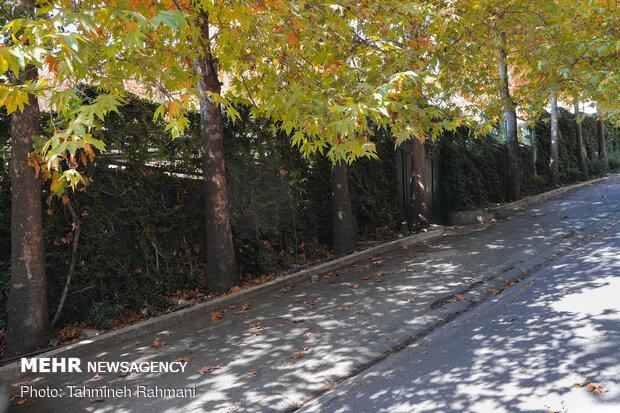 جمال الخريف في حدائق طهران