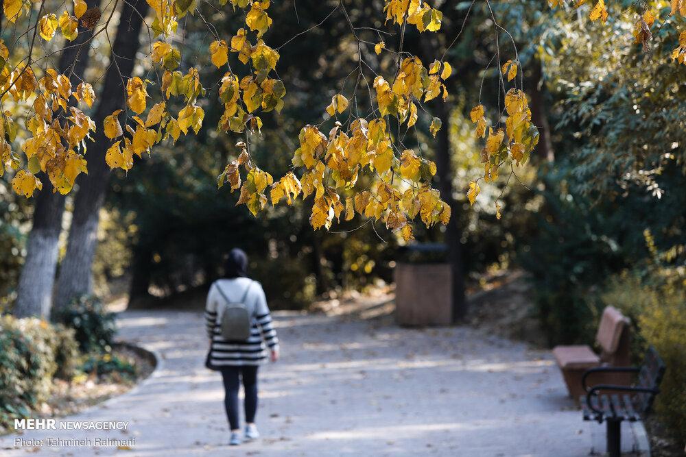 تہران میں موسم خزاں کے مناظر