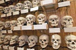 باحث فرنسي: استشهاد 875 ألف جزائري ما بين 1830-1872