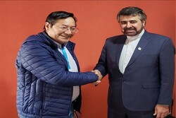 Bolivian new Gov. keen on reviving relations with Iran