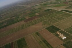 شناسایی باند تصرف اراضی ملی در دماوند