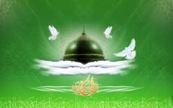 حکمت حضور نبی اکرم و ظهور منجی عالم بشریت صبر وپایداری انسانهاست