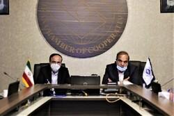 تشکیل کمیته مشترک بیمه و تعاون در دستور کار