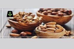 چرا از نهال گردو و بادام به عنوان بهترین نهالها یاد میشود؟