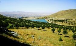 توسعه پایدار اقتصادی در گرو حفظ آب و خاک/جنگلکاری پیرامون اصفهان را دریابیم