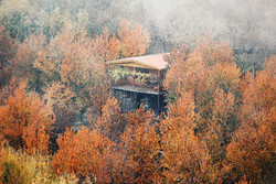 Breathtaking scenery of Autumn in Alvand foothills